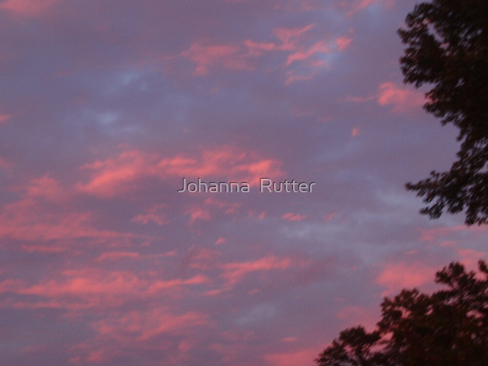 Sunset with clouds and trees by Johanna  Rutter