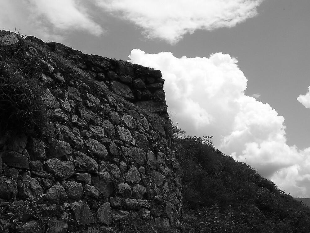 Inca wall, Machu Pichu by ioandavies
