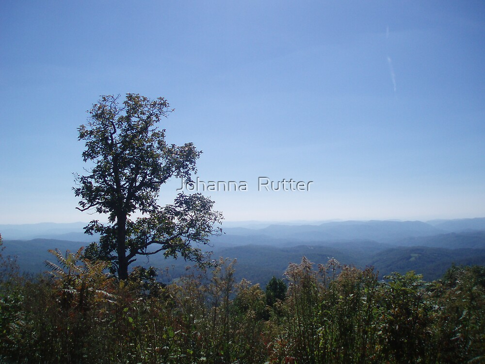 Elk mountain outlook by Johanna  Rutter