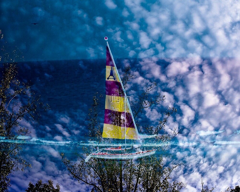 Sailing Trees by jlynn
