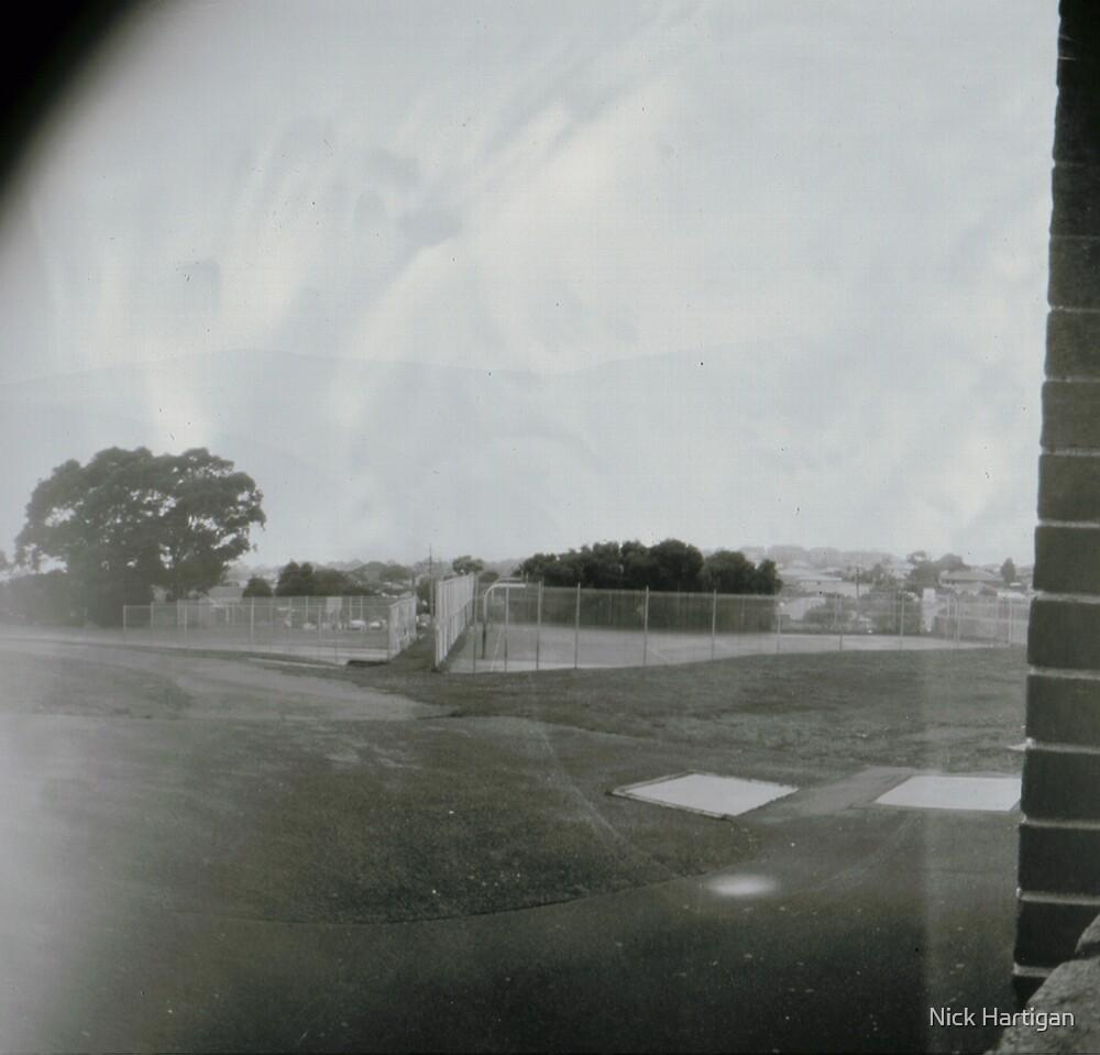 Cricket Nets by Nick Hartigan