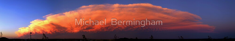 The Perfect Storm by Michael  Bermingham