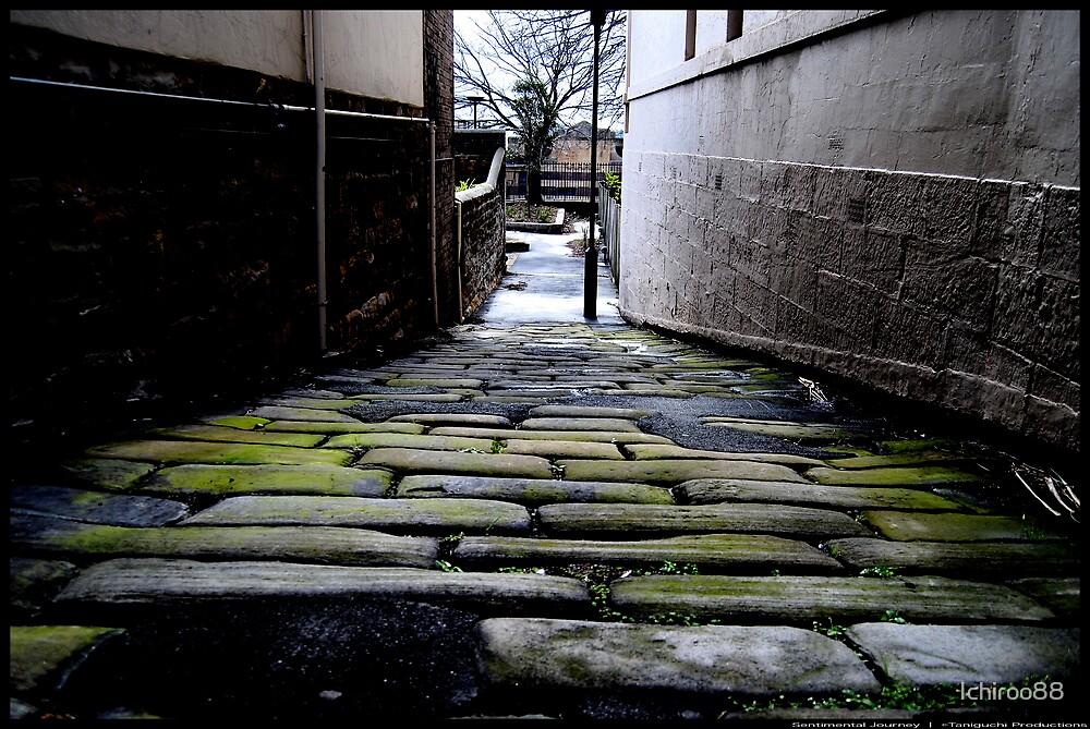 Sentimental Journey by Ichiroo88