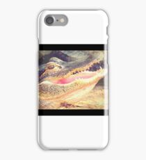 Carolina Gator iPhone Case/Skin