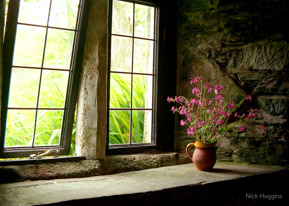 Flowers In Your Window by Nick Huggins