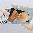 abstract no.13 by Susan Ringler