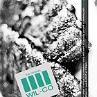 Faux Wilco by quietnight