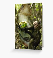 Long Tailed Macaque. Greeting Card