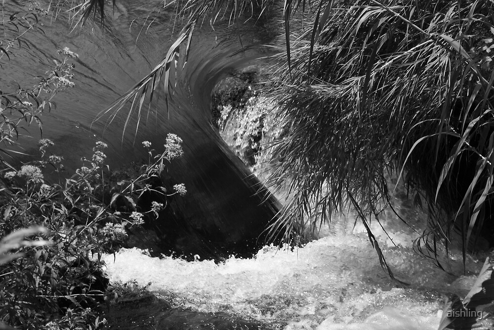 Water force by aishling
