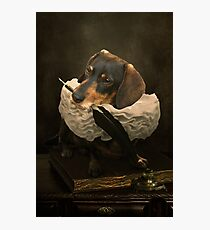 A Dogs Tale Photographic Print
