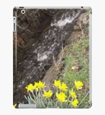Spring stream and yellow daffodils  iPad Case/Skin