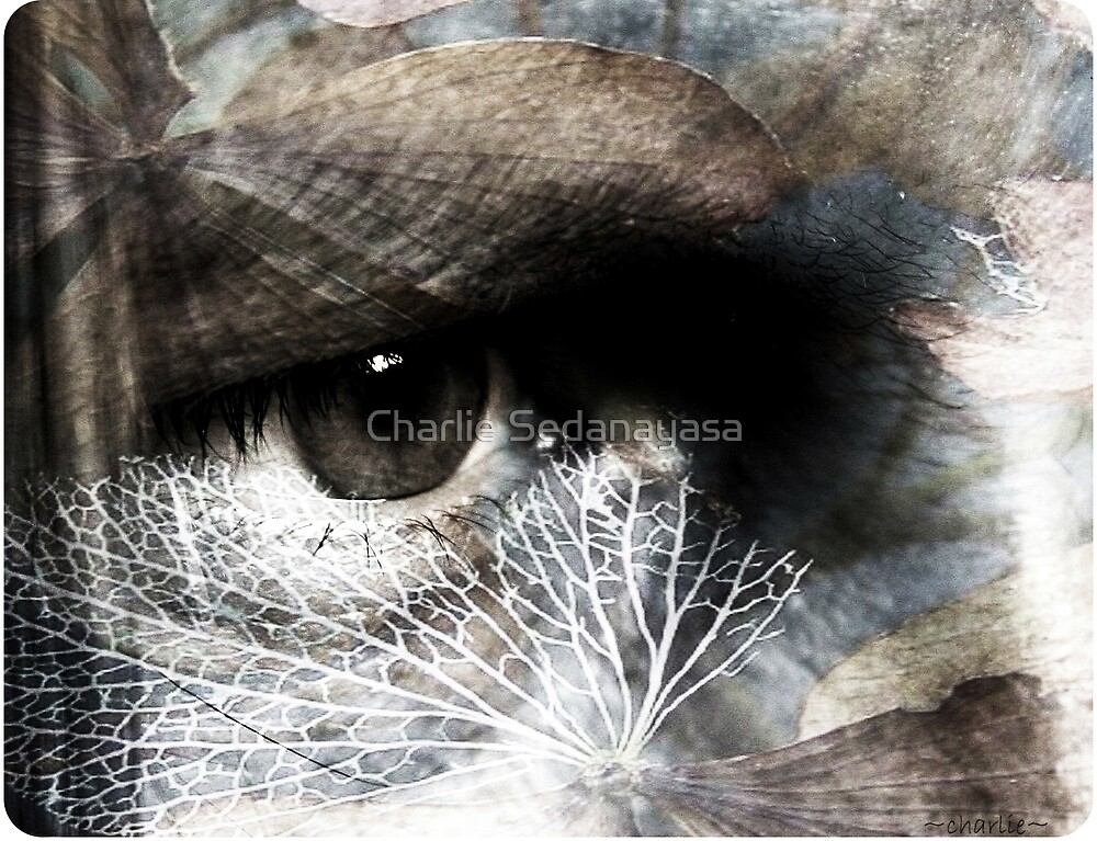 beneath... by Charlie Sedanayasa