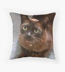 Burmese cat  Throw Pillow