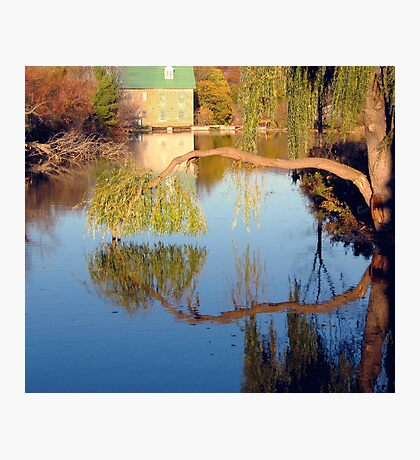 Fowlds Mill 2 Photographic Print