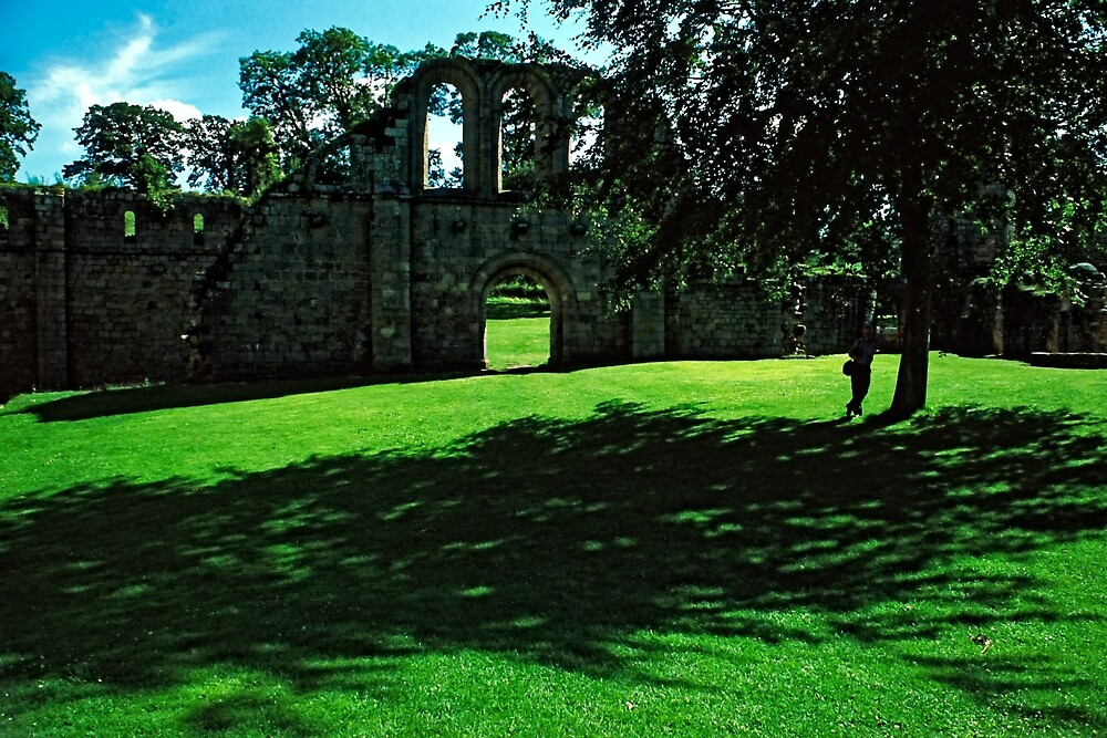 Ruins, Fountains Abbey, Midsummer by Priscilla Turner