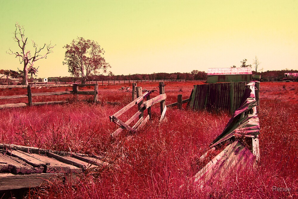 Red Grass... by Renae