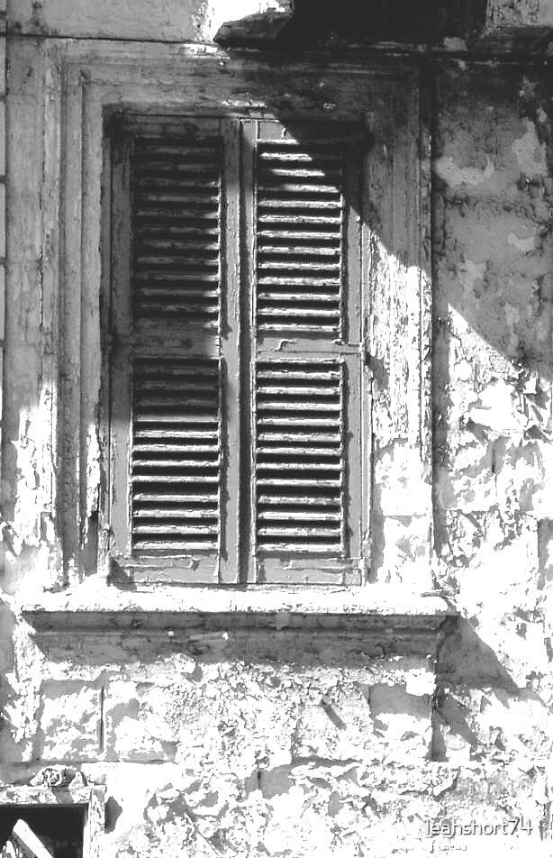 window by leahshort74