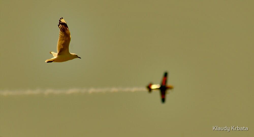 flight by Klaudy Krbata