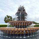 Charleston Pineapple Fountain, South Carolina by Catherine Sherman