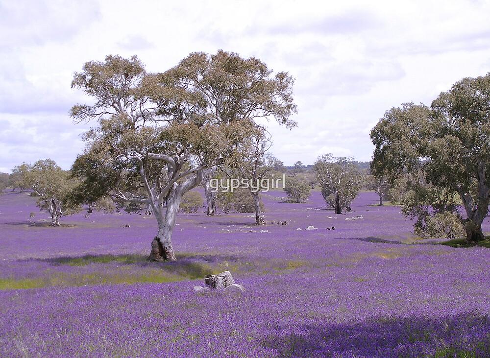 Purple by gypsygirl
