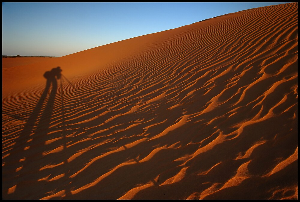 Dune Shadow Dawn by Robert Mullner