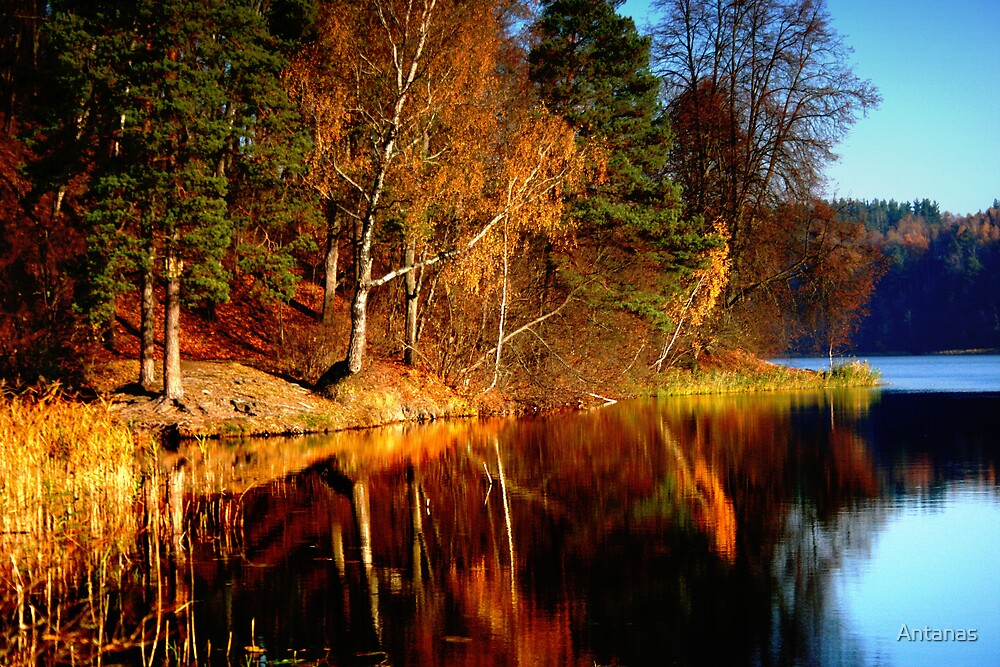 Silence In The Autumn Lake By Antanas Redbubble
