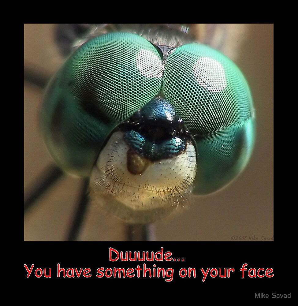 Duude you have something on your face!!! by Mike  Savad