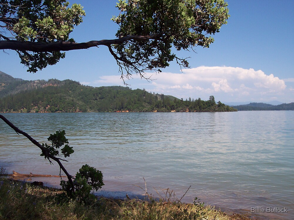 A Lazy View of Shasta Lake by Billie Bullock