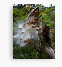 THE WONDERS OF MOTHER NATURE Canvas Print