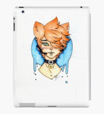 PC iPad Case/Skin