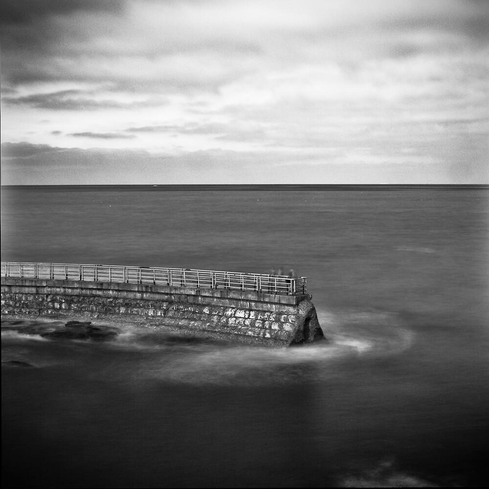 Sea Lion Cove by Michael Mancini