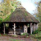 Fisherman's Hut by hootonles
