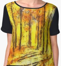 Abstract Fall Women's Chiffon Top