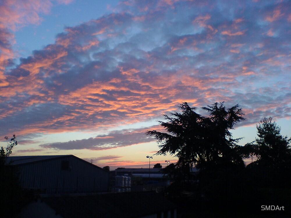 Sunrise in Suburbia by SMDArt