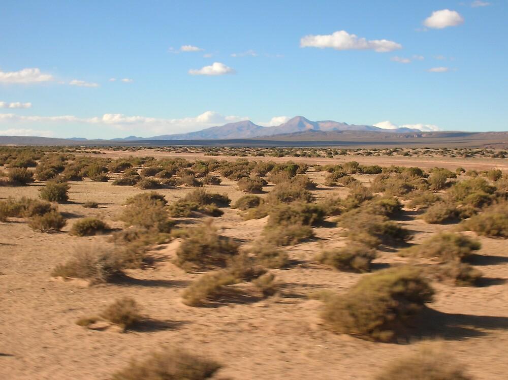 Passing Desert by bms2tjb