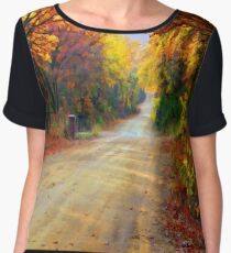 Painter`s Lane Women's Chiffon Top
