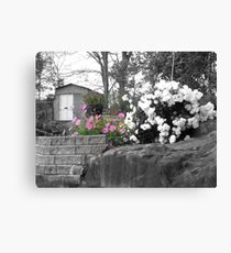 Countrytime with selective colors Canvas Print