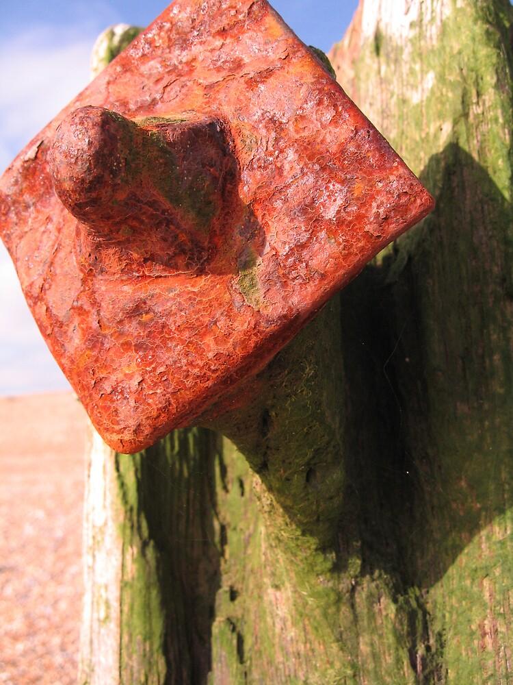 Orange Diamond by Sara Wiggins