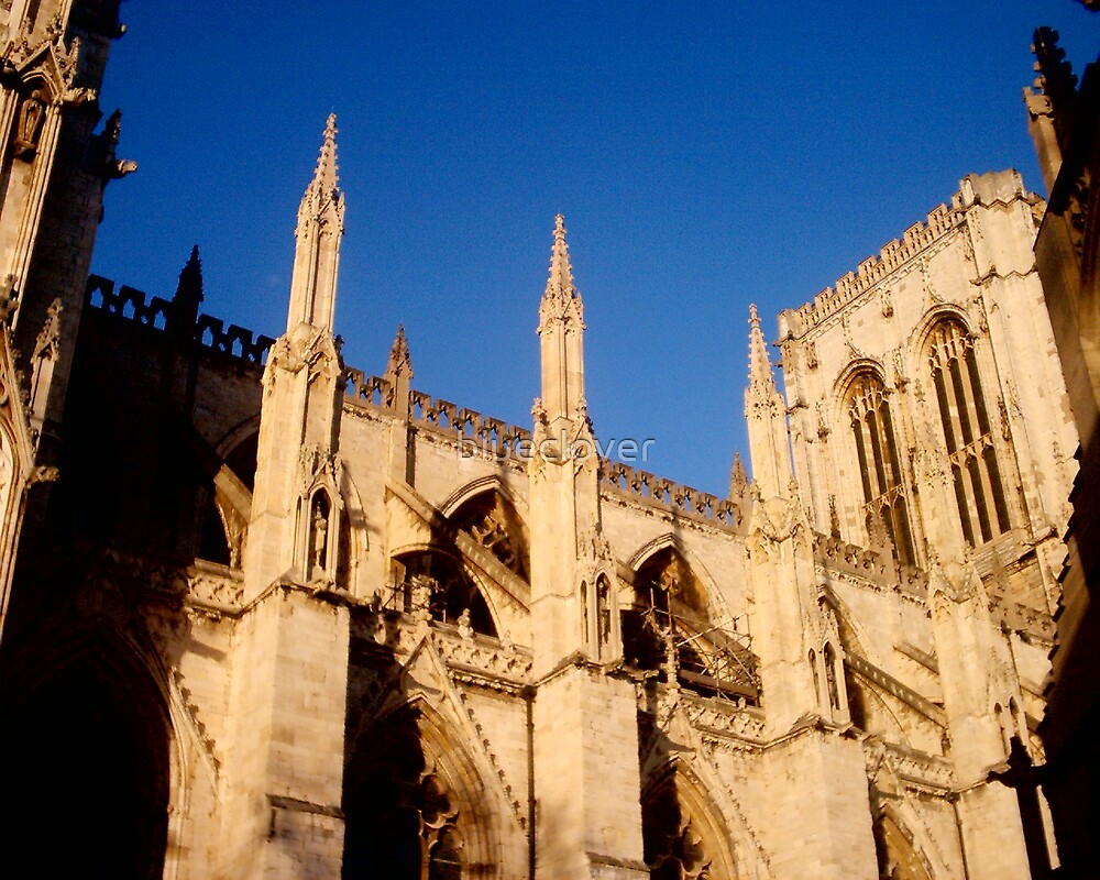 York Minster in afternoon by blueclover