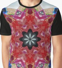 Red and blue classic trucks kaleidoscope Graphic T-Shirt