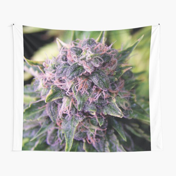 Trichome 14 Tapestry