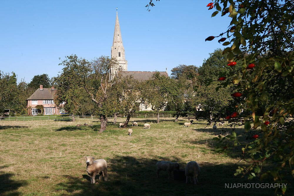 nocton, lincolnshire in the autumn by NJAPHOTOGRAPHY