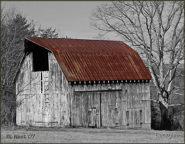 Old Weathered Barn by Beckylee