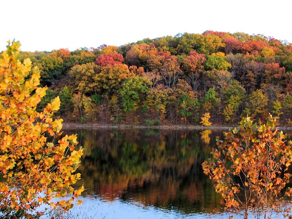 Lake Lincoln 2 by Brad Sumner