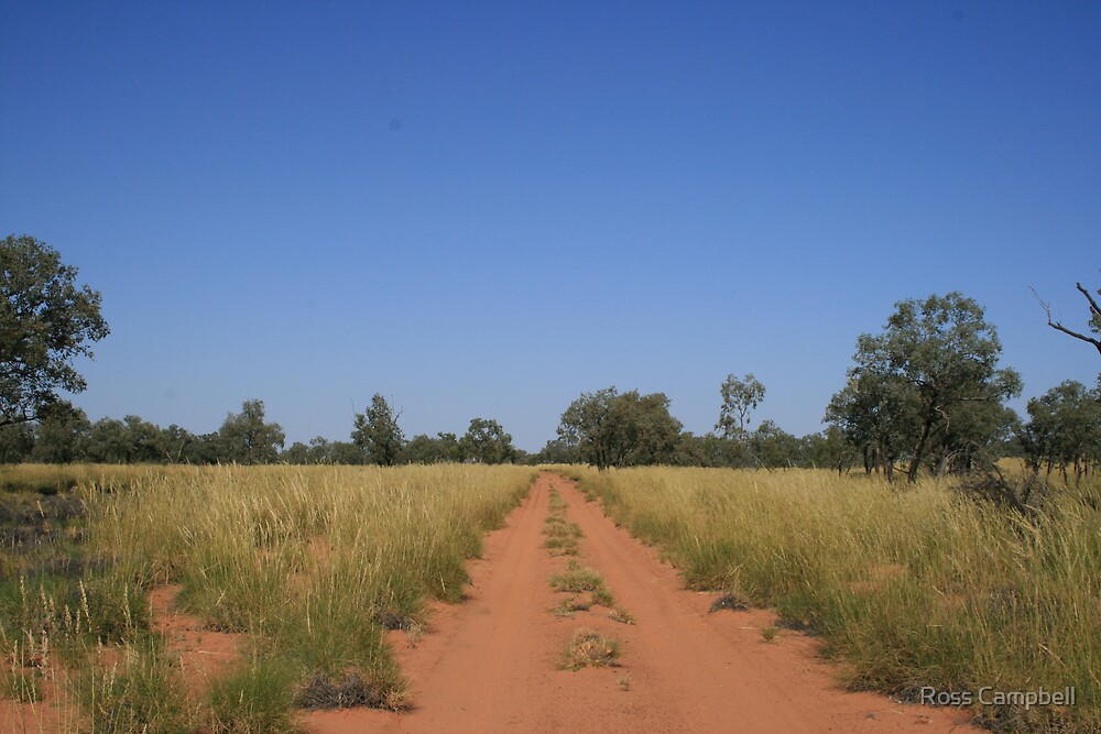 Through the spinifex. by Ross Campbell