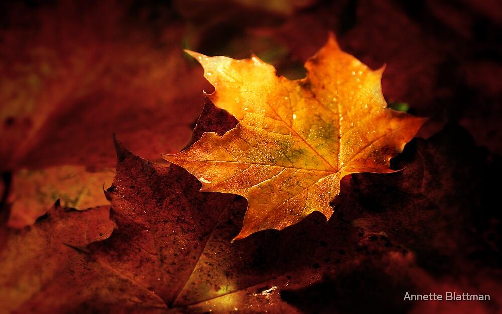 Autumn by Annette Blattman