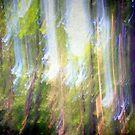 Dancing sunbeams #2 by Angela Bruno