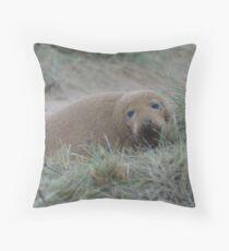 Sandy grey seal Throw Pillow