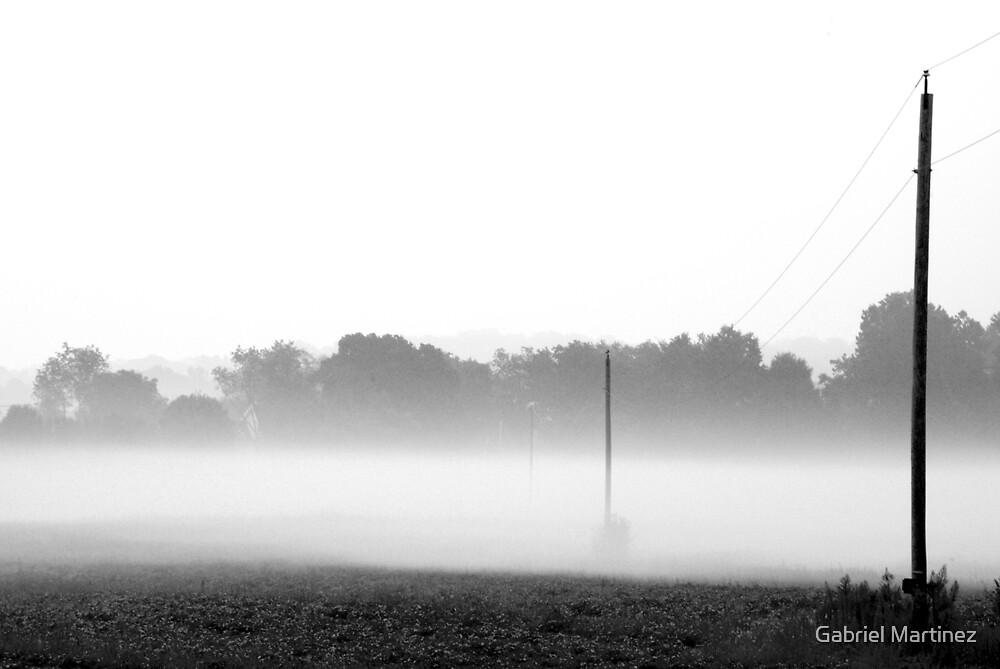 Misty Field by Gabriel Martinez