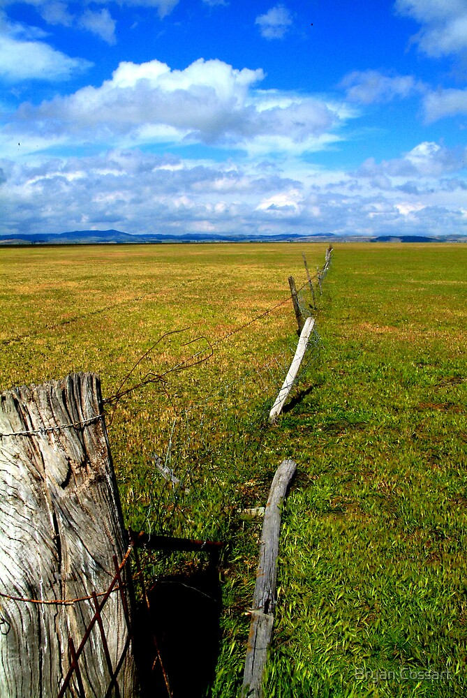 Lake George Fence by Bryan Cossart